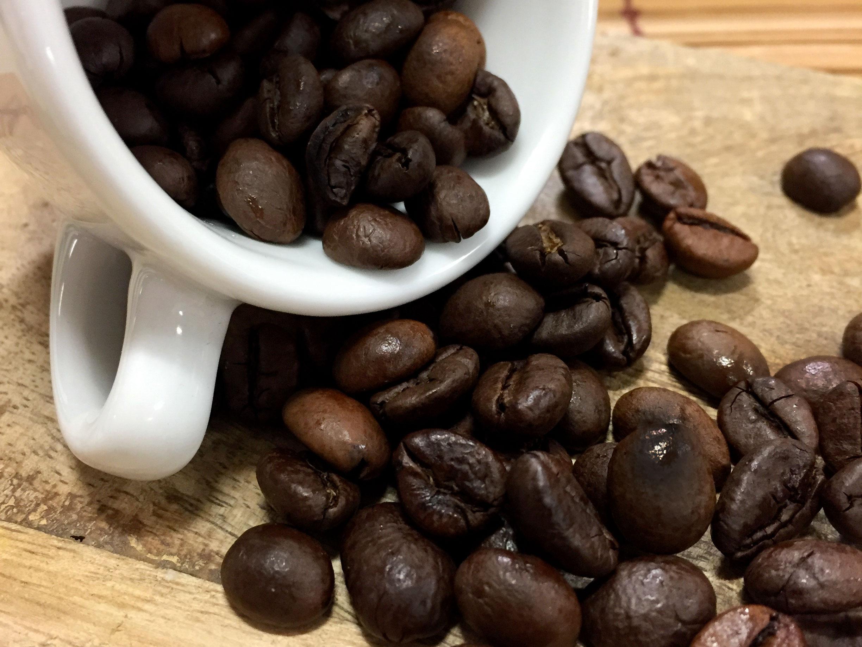 Granos de café de Java tostados